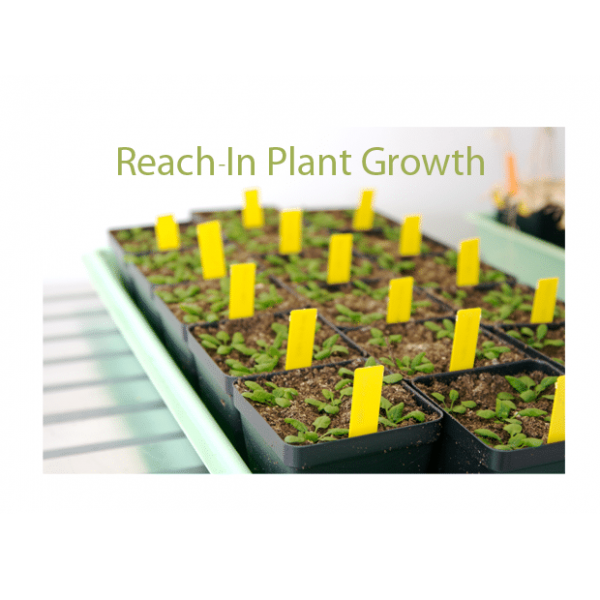 Reach-In Plant Growth