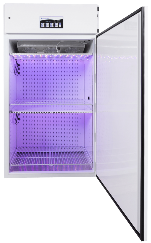 LED-41L2 open purple